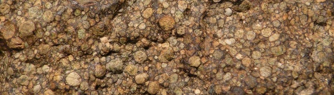 unequilibrated chondrite