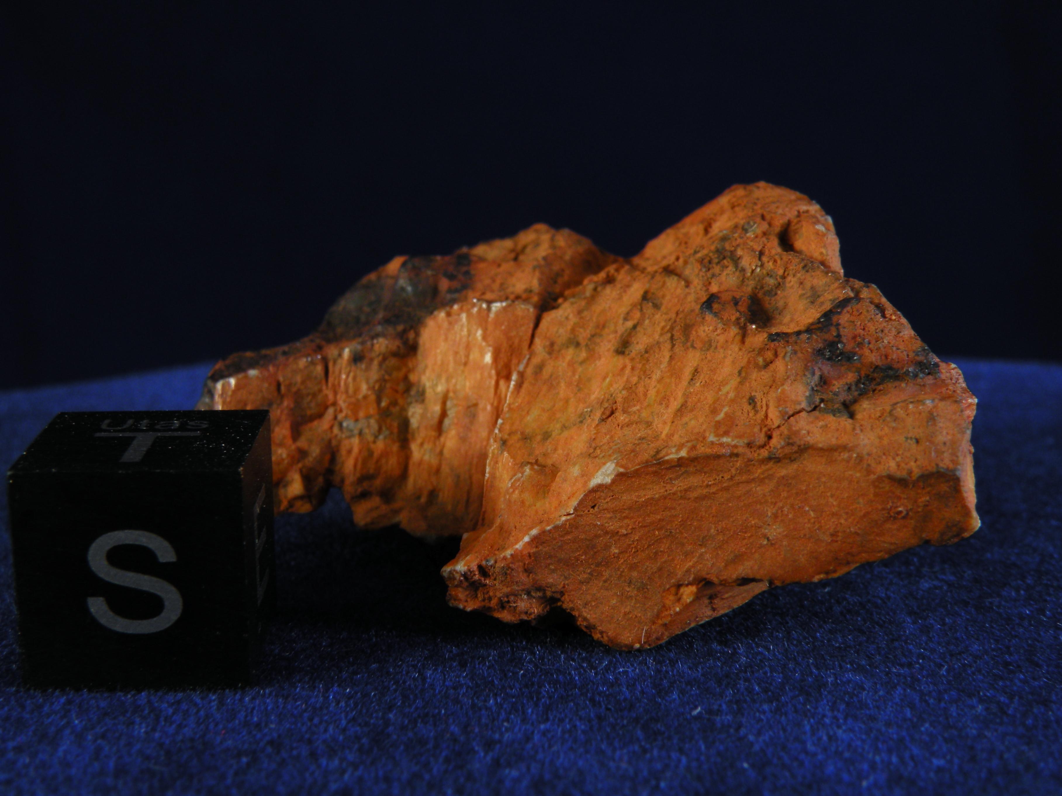 DSCN3018
