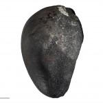 Meteorite (Ellerslie, Auckland, NZ)